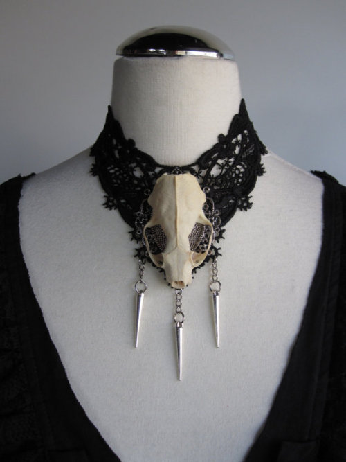 the-absolute-spookiest-posts:  Lace Choker w/ Real Skull