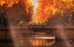 Autumn Glow - Dusseldorf, Germany | by Sonja Ehlen