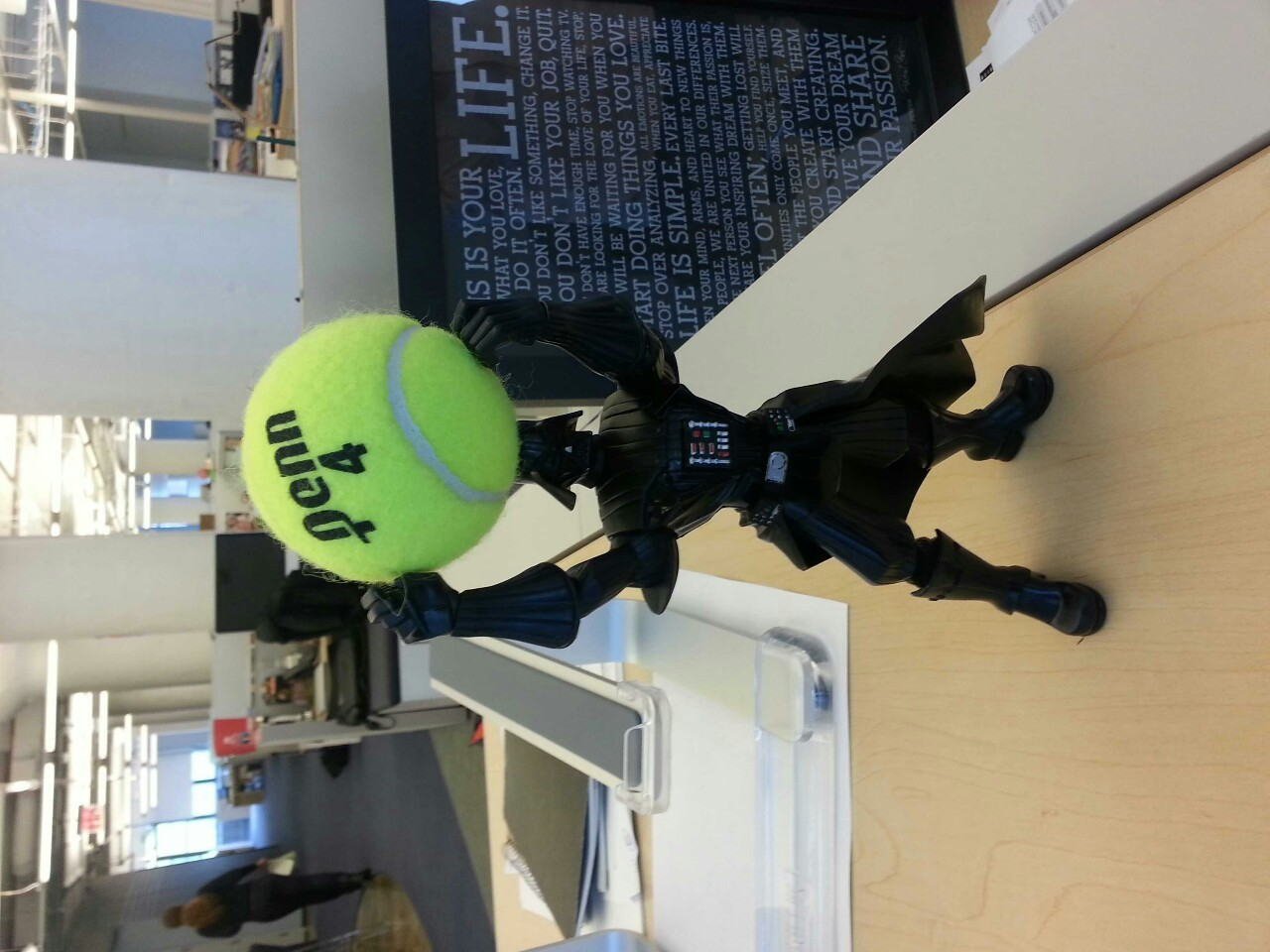 Darth took the tennis ball from my desk!