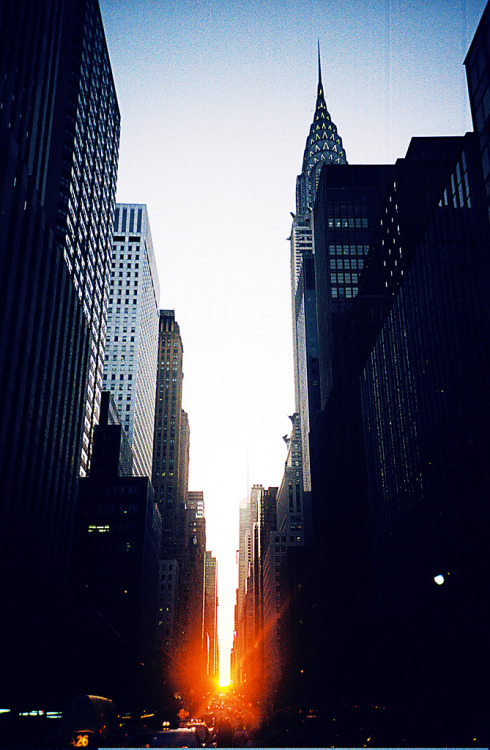 mystic-revelations:  manhattanhenge (by lorenzo please)