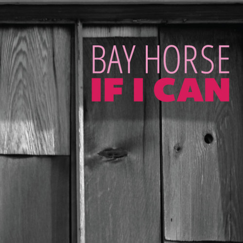 Bay Horse - If I Can photo credit: http://www.flickr.com/photos/31736686@N00/8512098649/