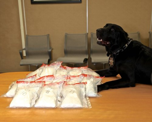 Jack is proud of his meth bust today. via imgur → more…