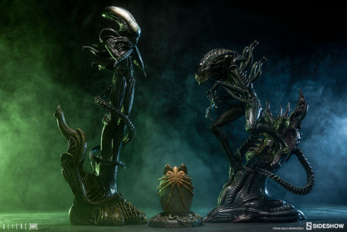 brokehorrorfan: