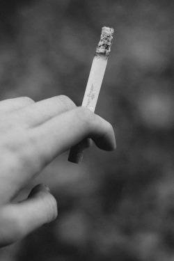 cigarette h