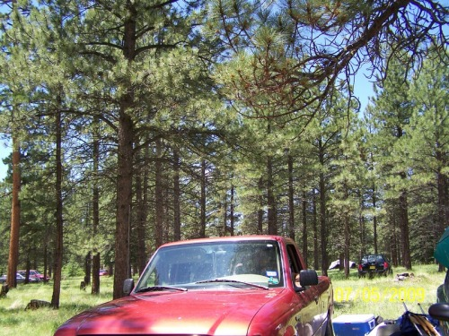 inproper505:  Rainbow Gathering 2009 in the Jemez Mountains NM was biblical. I was 19 and It was the craziest shit I had ever experienced. I went with four of my brothers, and if it hadn't been for one of my good friends, are asses would have seriously been in some shit (thanks and love to birdie always <3).  We had little direction on anything when getting on the mountain. The whole way up all you see are a bunch of crazy, cool hippies EVERYWHERE. The whole feeling was euphoric. We parked and set up camp SEVEN miles from where the gathering was taking place. Now you may be thinking, seven  miles? That ain't shit. Well I'll tell you that in 30 degree weather with rain and wind, it's a whole different story that can last a lifetime when you're living it. We were riding up in ninety degree weather. I was rockin a tank top and shorts with no intention of having a jacket. No one did. We only realized this way too late. It had just started to get cold and dusk was coming on strong, it would have taken us hours to get back to our campsite. So I start walking around checking things out, and I run into one of my good friends. Who thankfully had an extra tent. She saved our asses man. It would have been a cold night. I had just taken some bunk X and was really starting to feel it. I ended up crashing out that night, only to have my friends sister bring in a bag of oatmeal cookies with mushrooms. I'll NEVER forget it. Life for me, has not been the same since.