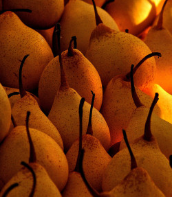 ensphere:  Pears by gcquinn on Flickr.