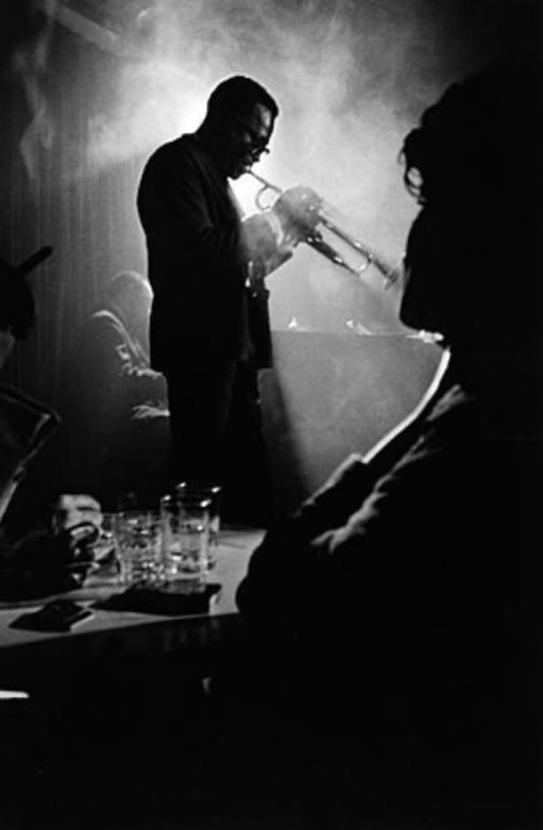 ravenrook2:  Miles Davis, Musician Photographer Unknown