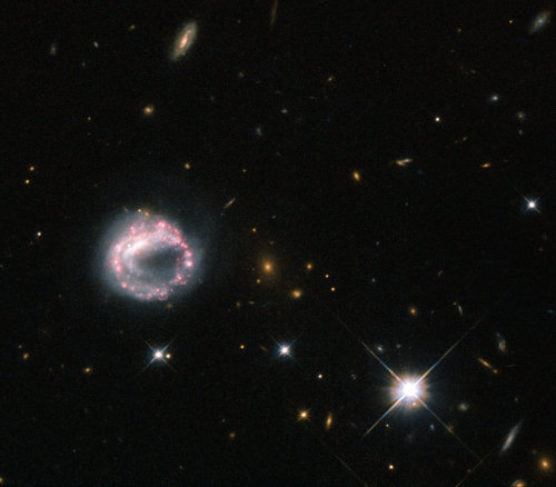 One Ring to Rule Them All      Galaxies can take many forms — elliptical blobs, swirling spiral arms, bulges, and discs are all known components of the wide range of galaxies we have observed using telescopes like the NASA/ESA Hubble Space Telescope. However, some of the more intriguing objects in the sky around us include ring galaxies like the one pictured above — Zw II 28.      Ring galaxies are mysterious objects. They are thought to form when one galaxy slices through the disc of another, larger, one — as galaxies are mostly empty space, this collision is not as aggressive or as destructive as one might imagine. The likelihood of two stars physically colliding is minimal, and it is instead the gravitational effects of the two galaxies that causes the disruption.      This disruption upsets the material in both galaxies, causing it to redistribute to form a dense central core, encircled by bright stars. All this commotion causes clouds of gas and dust to collapse and triggers new periods of intense star formation in the outer ring, which is thus full of hot, young, blue stars and regions that are actively giving rise to new stars.      The sparkling pink and purple loop of Zw II 28 is not a typical ring galaxy due to its lack of a visible central companion. For many years it was thought to be a lone circle on the sky, but observations using Hubble have shown that there may be a possible companion lurking just inside the ring, where the loop appears to double back on itself. The galaxy has a knotty, swirling ring structure, with some areas appearing much brighter than others.