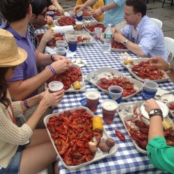 Crawfish boil on Hudson River at the 79th Street Boat Basin. I can't get away from them.
