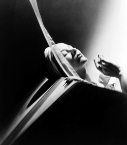 horst-p-horst-perfection