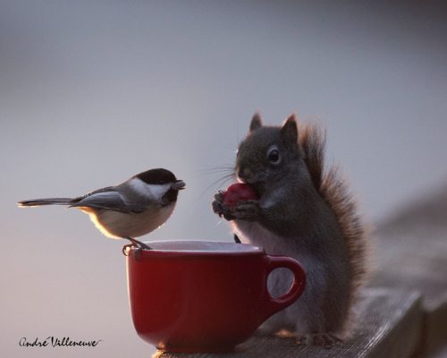 """A gift exchange"" by Andre Villeneuve"
