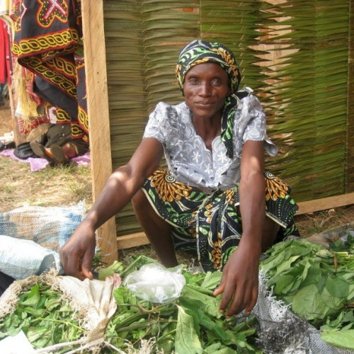 Women have been called the 'voiceless pillars' of African agriculture. It's estimated that two thirds of all women in Africa work in the agricultural sector and produce nearly 90 percent of the food on the continent. This Cameroonian woman displays her crops at the annual agro-pastoral show in Limbe, in the southwest region of Cameroon.