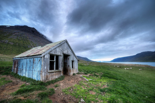 Misty Mountains & The House of Sheep - West Fjords, Iceland on Flickr.www.davemorrowphotography.com