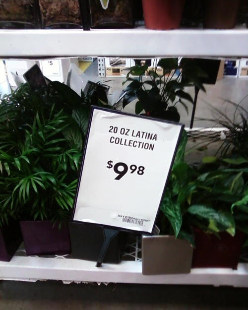 I saw this at Lowe's today. I'm guessing it's the pots? They put $5 plants in an ugly cube-shaped pot and charge you $10? I really don't know (much like the way I don't know why they're speaking of azaleas and cyclamens when none of those things are pictured, also who in their right mind would try to grow azaleas in an OFFICE ffs) but that's really all secondary to how they're using an identity that belongs to women of color as some kind of meaningless product name completely detached from all contexts, because it's not like Latinas are PEOPLE or anything, especially not people whose involvement with the home and garden industry in the U.S. is highly racialized and significant it's utterly mystifying