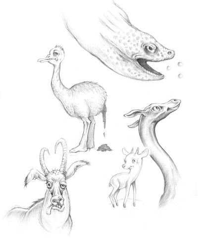 academy of science animal sketches