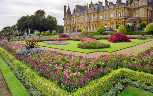 gatestowonderland:  Waddesdon Manor Gardens (National Trust) , Buckinghamshire, UK | Traditional bedding plants used in this Victorian garden (21 of 30) by ukgardenphotos on Flickr.