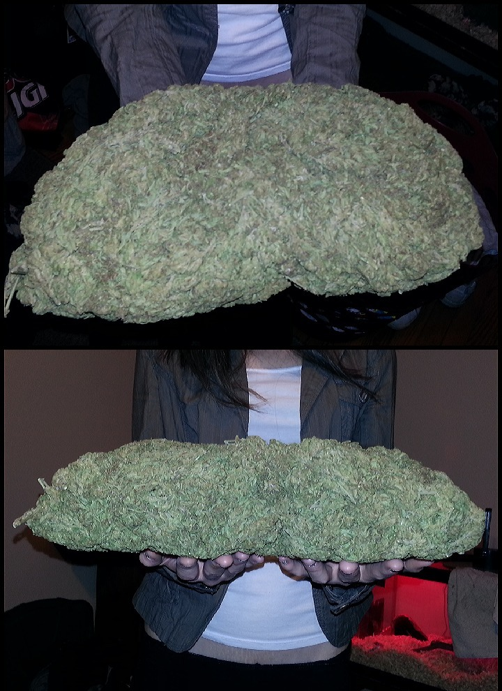 your-pot-blog:  Just a handful of weed ! wonderful weed