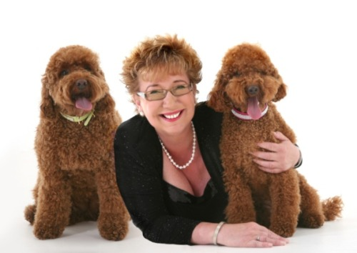'My poodles are psychic' http://www.belpernews.co.uk/news/local/my-poodles-are-psychic-1-5386867