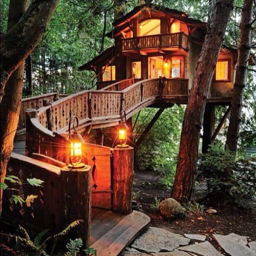 teyahgetslife:  Who knew #treehouses could be this dope!