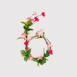 (via Typography / Anne Lee: Floral Typography)