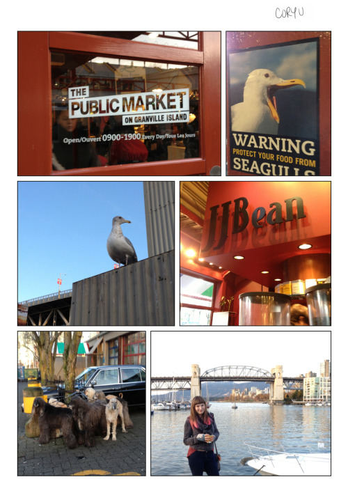 I never thought I'd be scared of seagulls until Granville Island, Vancouver. Walking through The Public Market (similar-ish to St. Lawerance Market) for some coffee I laughed at the seagull warnings at the exit doors to the harbour. After stepping outside though, I wasn't laughing anymore. The seagulls in Vancouver are scarily giant! The next day I heard a story from a woman that witnessed one devouring a squirrel. The only thing I've ever seen a Toronto seagull eat is a McDonalds fry. I now understand why Amani could be so afraid of birds. I would be too if I lived near these squirrel eating monsters… -Cory U PS We never saw who the heck actually owned all those dogs, but they must be a pain to walk. They sure weren't fond of our little pup that day.