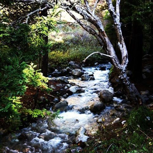 River by our campground #camping #outdoors #lifeisgood #instagood #instagramers #bigsur @steveyui @mkadile