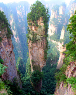 Tianzi mountains, China. Photo credit Richard Janecki. Source.