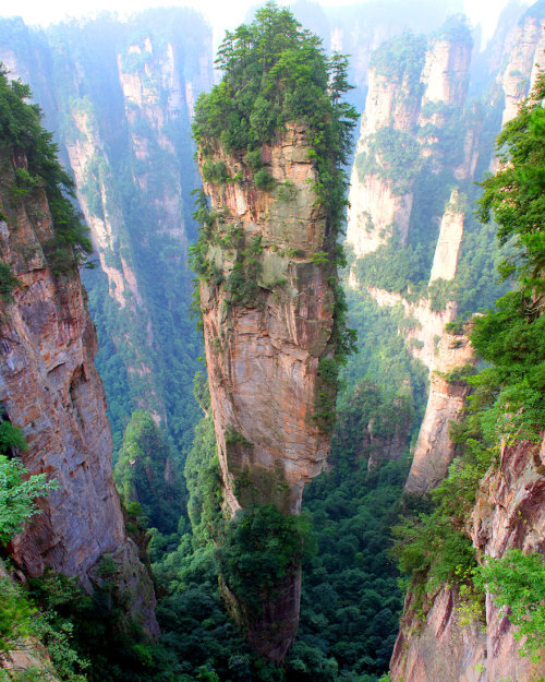 seabunky:  Tianzi Mountains, China (X)