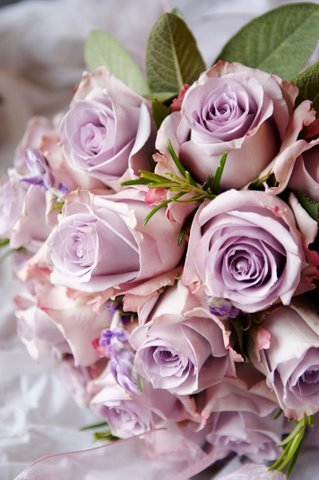 purple roses and I'm all yours