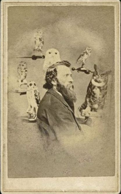ca. 1860's, [carte de visite portrait of a gentleman, possible a taxidermist, surrounded by stuffed owls], M.N. Tubbs via Luminous Lint, from the private collection of Laddy Kite, LL/35982