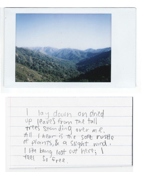 perfectmadness:  (by Mackensie Noelle)