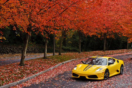 automotivated:  Fall Colors (by atomic80)
