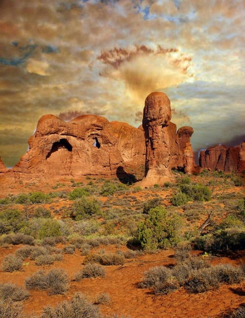 canciondelapsique:  Amber Arches, Arches National Park, Utah. Photo Marty Koch