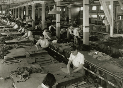 Levi Strauss & Co Factory, 1930's.