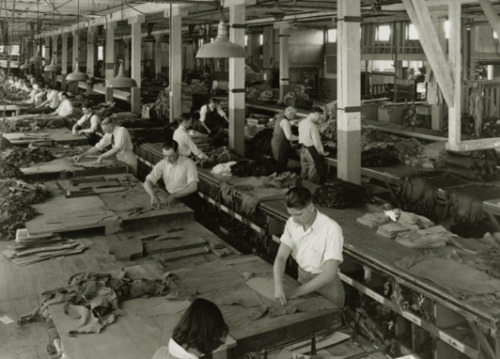 Levi Strauss & Co Factory, 1930's.  Never Trust The Telegraph's photo captions! Workers in the Levi's factory, c1880  http://fashion.telegraph.co.uk/news-features/TMG10016074/Meet-James-Curleigh-the-new-sheriff-of-Levis.html