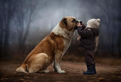 chubbyaddiction:patlem50:Trop adorable…I'll protect you lil human…