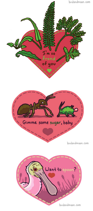 "Some adorable valentines inspired by nature, from the always wonderful Bird and Moon comic. That middle one is especially cool. Certain species of ants ""milk"" sweet sap from aphids in order to get a sugary meal. It's a biological relationship called ""mutualistic symbiosis"". Maybe not love, but certainly a tight-knit bond."