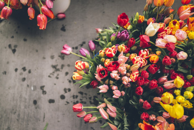 floralls:  Tulips at the market (by artchang)