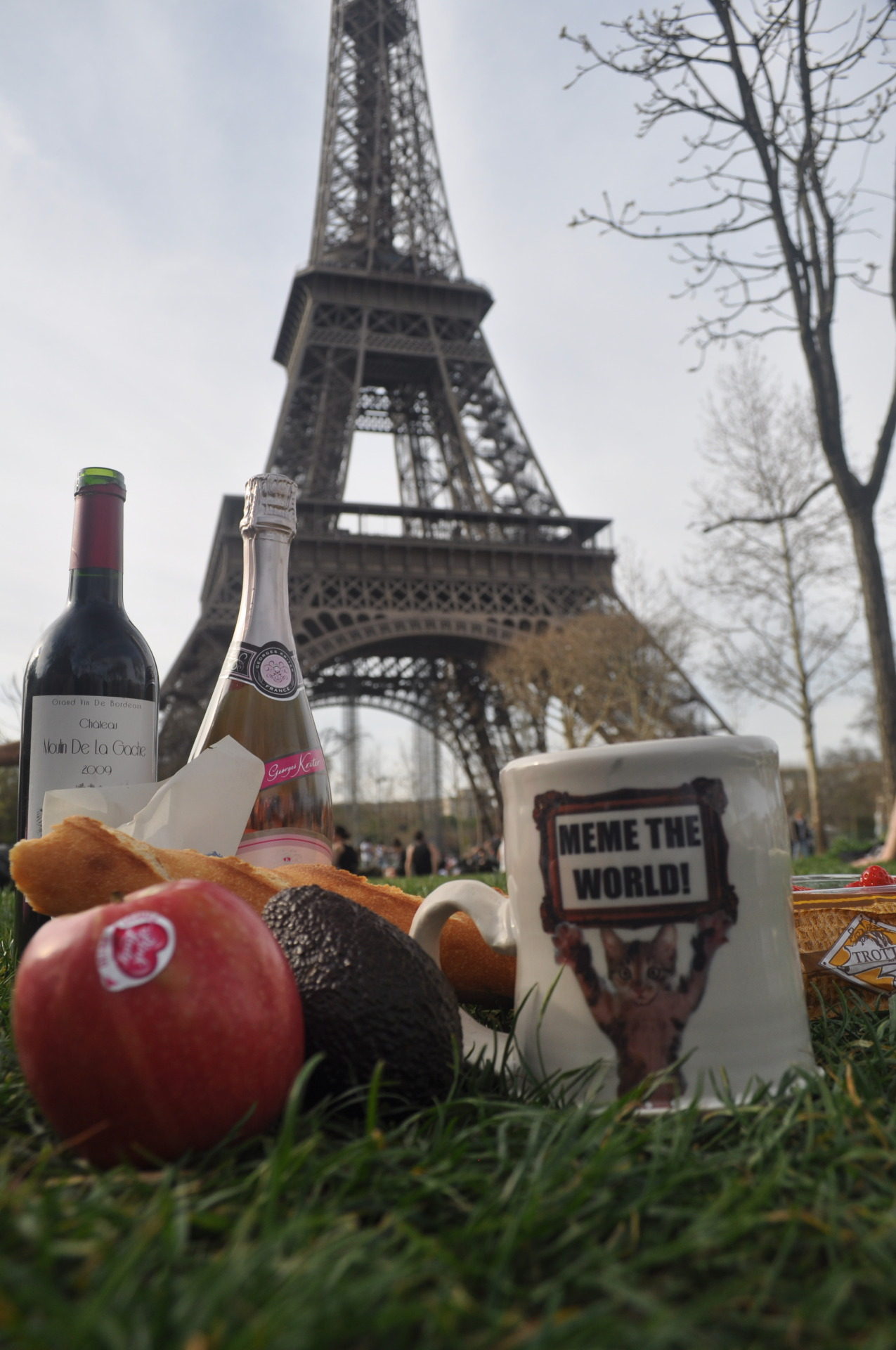 Picnicing in Paris!