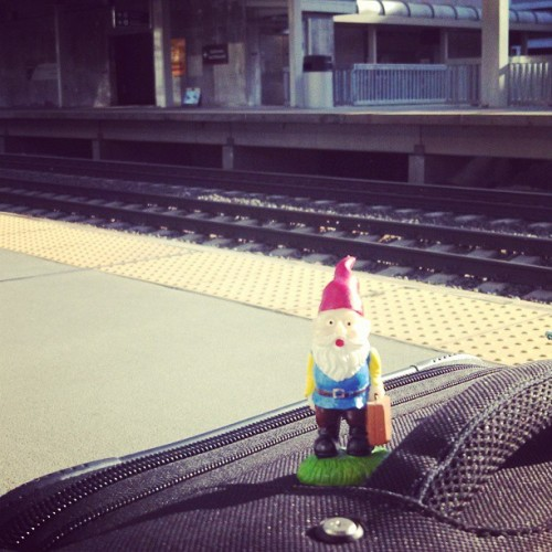Roaming gnome, waiting for his train to D.C.