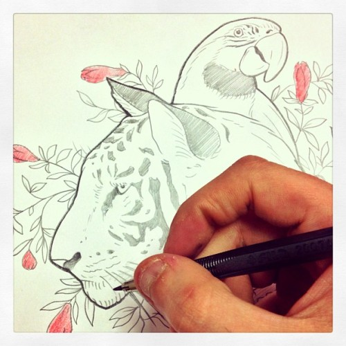Put together a #white #tiger and a #parrot. Giving birth to a #tattoo is pretty crazy today  (presso Kaifa's Studio Tattoo & Body Piercing)
