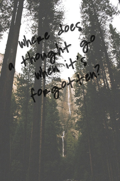 i-feel-s0:  saw this quote and decided to put it in a picture :)