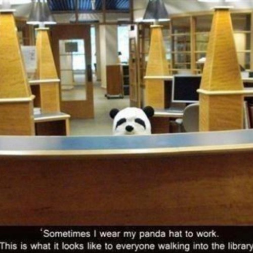 @tretharaider Do you have a panda hat?