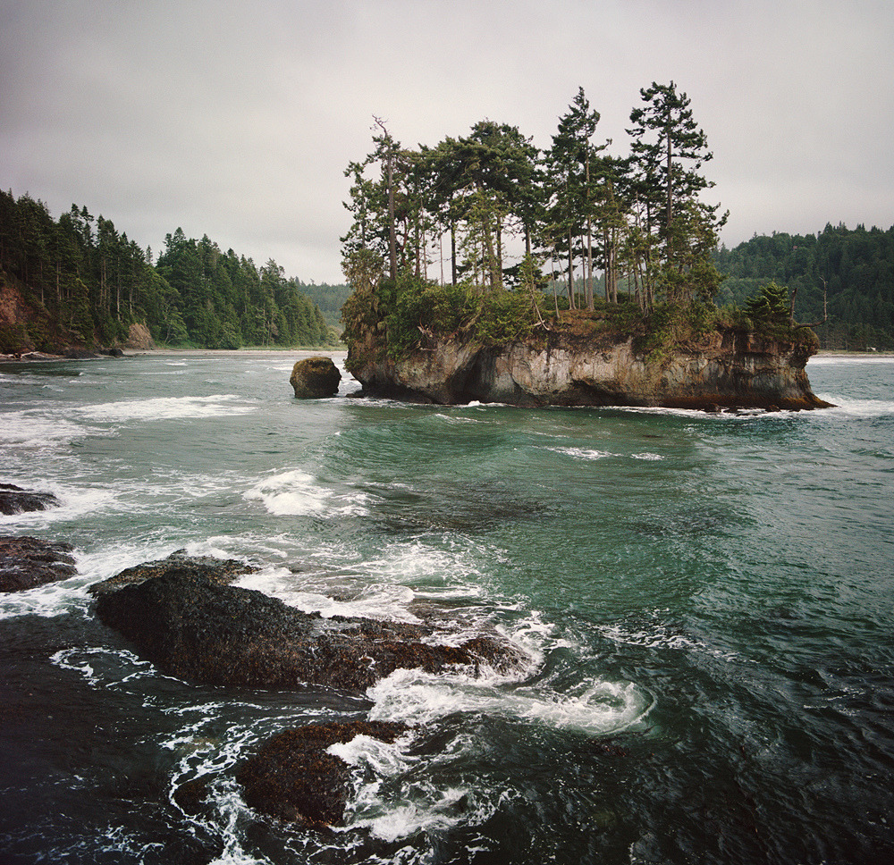 travelingcolors:  Little island in Salt Creek | Washington (by Danielle Hughson)