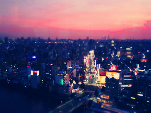 dreams-of-japan:  Tokyo Sunset by JaredKozel on Flickr.