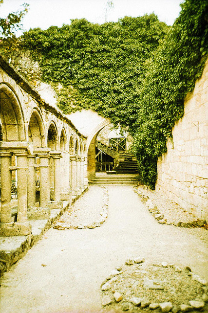 | ♕ |  WHS historic site - Saint-Émilion, France  | by © Marcio Serpa