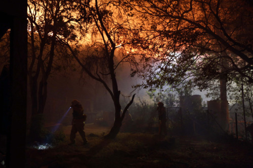 Patrick T. Fallon—Reuters  May 2, 2013. Firefighters battle to protect the Sycamore Nature Center from the Springs Fire near Pacific Coast Highway and the Los Angeles County Line at Malibu, California. Read more: http://lightbox.time.com/2013/05/03/pictures-of-the-week-april-26-may-3/#ixzz2SNY6r0Ad