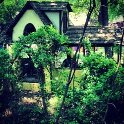 Treehouse view  (at Scarborough Faire)