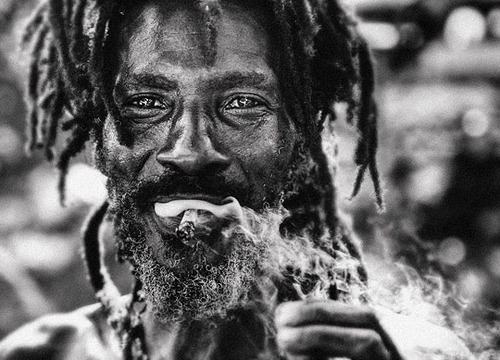 Rasta by Luke Woodford