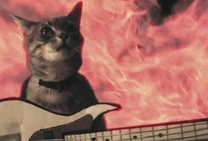 whoa ah whoa this cat is on fire